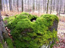 Dziravy kameň