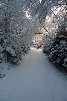 v zajatí snehu ;-)