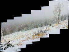 ... niekde vo Volovskych vrchoch ...