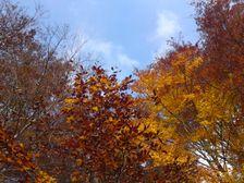 Jeseň v Šťiavnických vrchoch