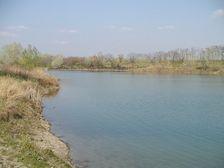 Zelená voda