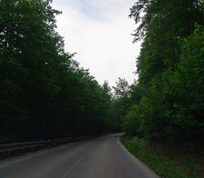 Na ceste