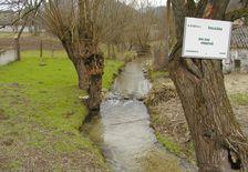 Potok Holeška