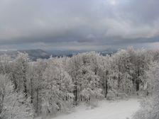 Mojtín v zime