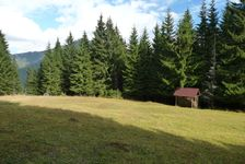 po zelenej z Iľanovského sedla do Iľanovskej doliny