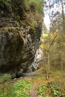 po zelenej z Iľanovského sedla do Demänovskej doliny