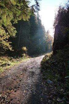 Iľanovská dolina