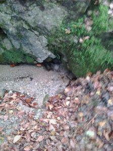 Vodný prameň nad Trebichavou
