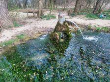 vrt pri Vyčome