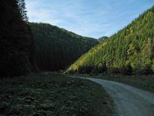 Dolina