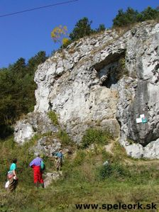 Liskova cave