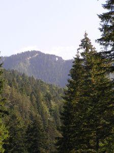 Jánska dolina smerom na Ohnište