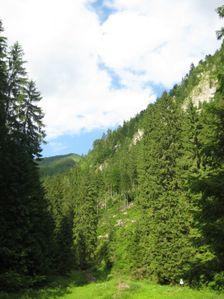 Pohľad na skaly od dolinky Hučiaky
