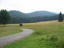 Železné smerom do sedla Pievalec
