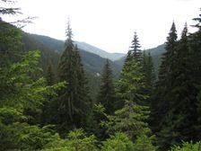 Krížska dolina  a Predpekelné od baní na Ostredku