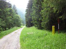 Dolina Barboriná - oznacená trasa cesty R1