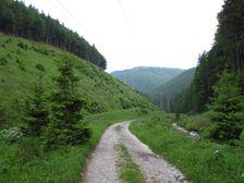 Dolina Barboriná