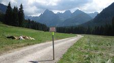Bielovodska dolina