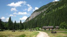 Horaren v Bielovodskej doline