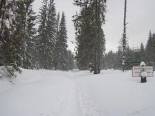 Hviezdoslavova aleja v zime