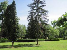 Kaštiel - park - Mojmírovce