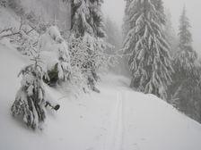 Zima pod Siprinom