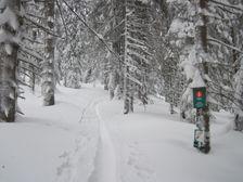 Na Babej hore v zime - pod Stavinami