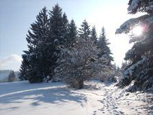 Lupcianska Magura v zime