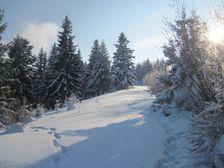 Hole na Lupcianskej Magure