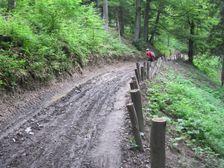 Cyklotrasa v Pieninach