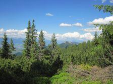 Ľubelská hoľa - do Ľubelskej - Šucvald