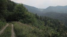 Trlenska dolina - smerom na Vtacnik