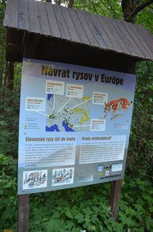 Informačná tabuľa, návrat rysov v Európe