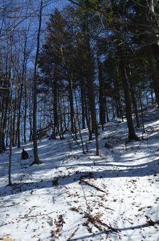 Snehové pásmo