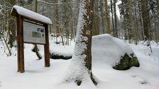 Historický nápis pod Kesslom - informačná tabuľa a skala s nápisom (pod snehom)