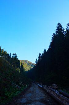 Žarnovická dolina
