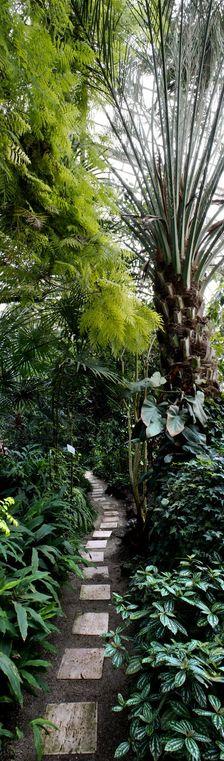 Botanicka zahrada II.