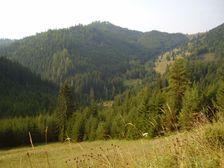 saddleback Kopanec